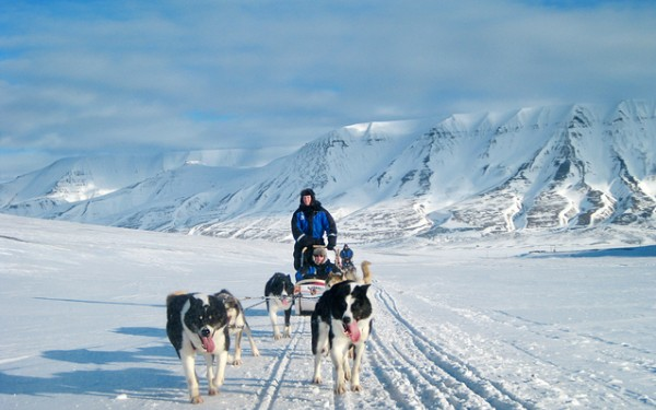 The tourism industry on Svalbard needs to thrive. At the same time, the nature must be conserved. It is a challenge. Photo: Marcela Cardenas / nordnorge.com